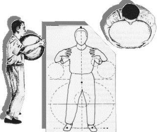 Proper form Zhan-Zhuang stance